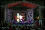 Грушинский фестиваль. Фото Татьяны Выборновой
