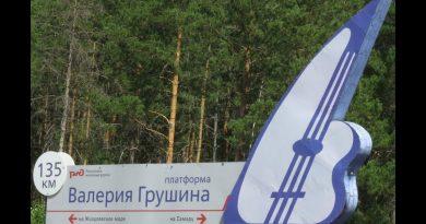 Грушинский 2019 — фестивальные зарисовки